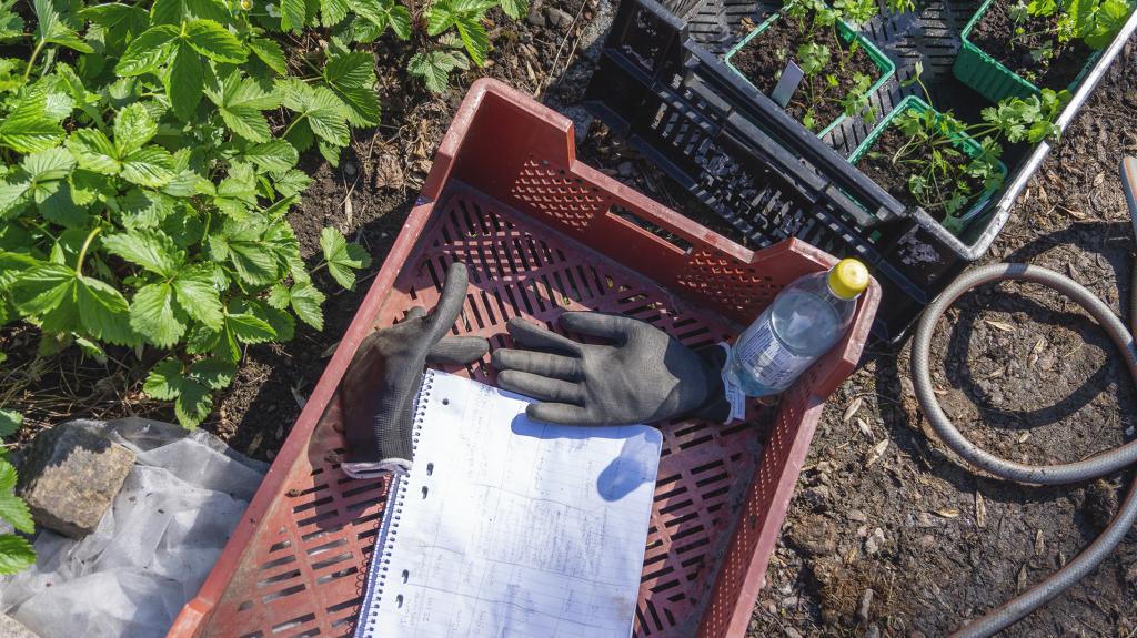 trädgårdshandskar och verktyg