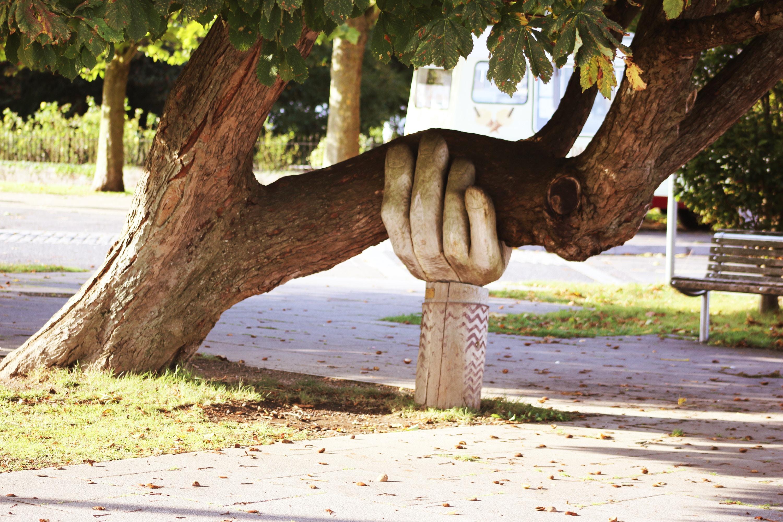 dektrativ bild på träd